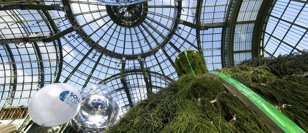 A green hut is pictured at the Grand Palais during the Solutions COP21 in Paris, France, December 4, 2015 as the World Climate Change Conference 2015 (COP21) continues at Le Bourget near the French capital. REUTERS/Benoit Tessier - RTX1X7L7