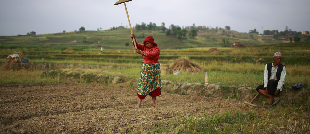 A farmer plows on her field at Khokana, in Lalitpur April 29, 2013. REUTERS/Navesh Chitrakar (NEPAL - Tags: SOCIETY AGRICULTURE TPX IMAGES OF THE DAY) - GM1E94T1PBQ01
