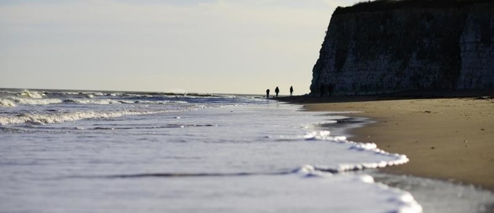 A family take their dogs for a walk along the beach on the outskirts of Broadstairs in Kent, southern England January 2, 2015. REUTERS/Dylan Martinez   (BRITAIN - Tags: ENVIRONMENT SOCIETY) - LM1EB12129101