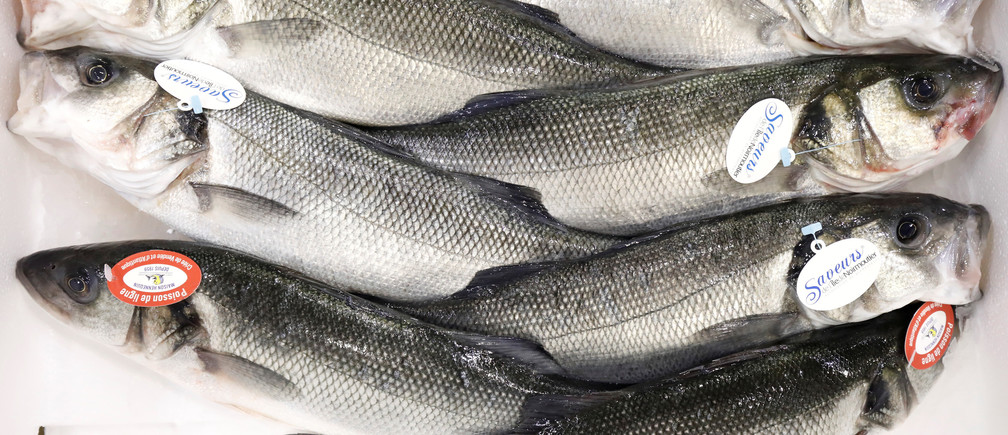 Line caught sea bass are pictured at the fish pavilion in Rungis International wholesale food market as buyers prepare for the Christmas holiday season in Rungis, south of Paris, November 30, 2017. Picture taken November 30, 2017. REUTERS/Benoit Tessier - RC12FC6D837