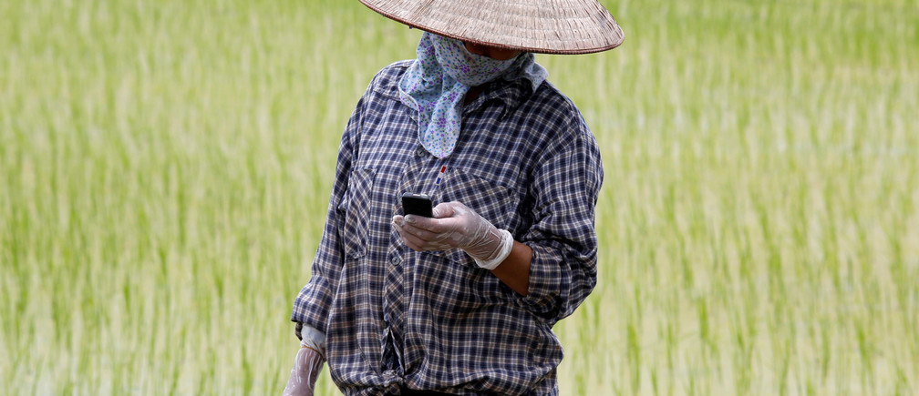 A farmer reads a message on a cell phone while working on a rice paddy field outside Hanoi, Vietnam July 3, 2017. REUTERS/Kham - RC1A378C5B00