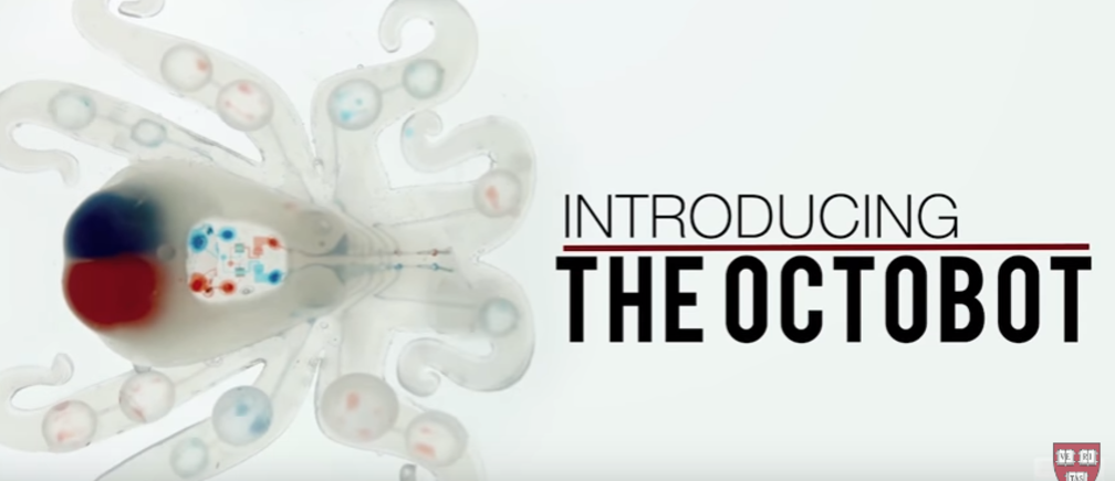 "Introducing the ""Octobot""."