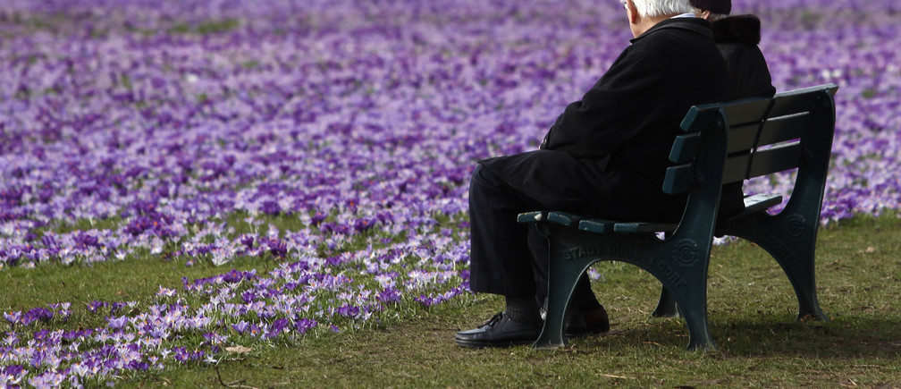 An elderly couple sit on a bench next to crocus flowers in a park in Duesseldorf March 17, 2010.  REUTERS/Ina Fassbender