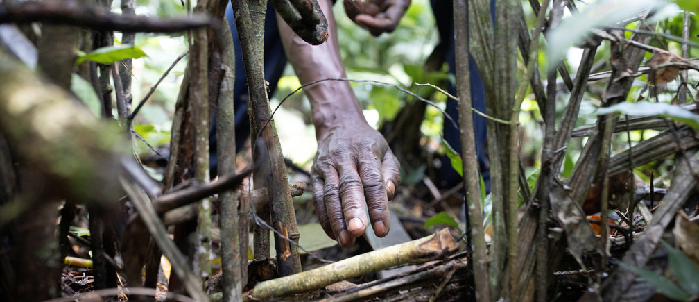 Mohamed Esimbo Matongu checks a trap in the forest near the city of Mbandaka, Democratic Republic of the Congo, April 03, 2019. REUTERS/Thomas Nicolon - RC15EC57B2F0