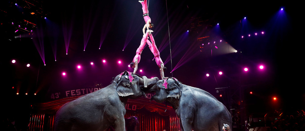 Members of Joy Gartner Family and their elephants perform during the opening ceremony of the 43rd Monte-Carlo International Circus Festival in Monaco, 17 January 2019. REUTERS/Sebastien Nogier/Pool - RC1B28A37ED0