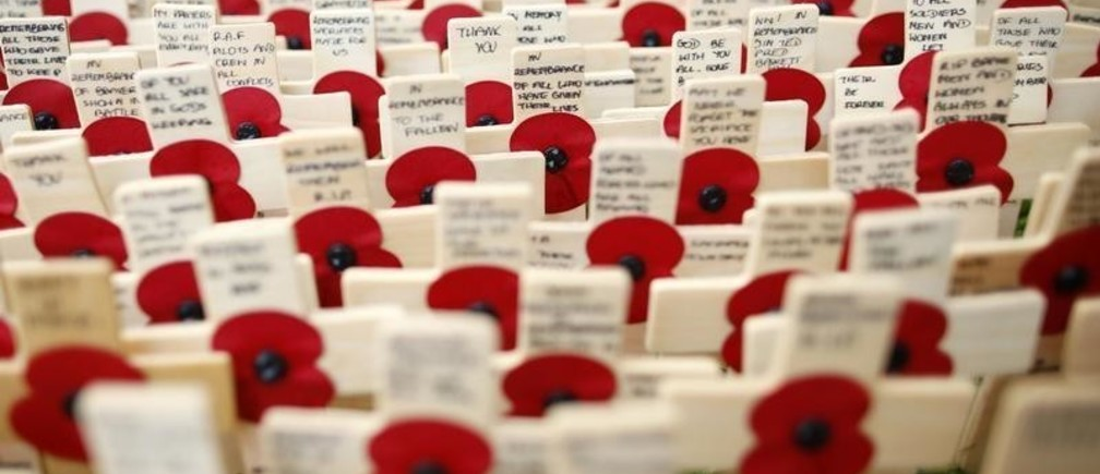 Poppies are seen in the Field of Remembrance in Westminster Abbey in central London, November 6, 2013. REUTERS/Olivia Harris (BRITAIN - Tags: SOCIETY) - GM1E9B705YI01