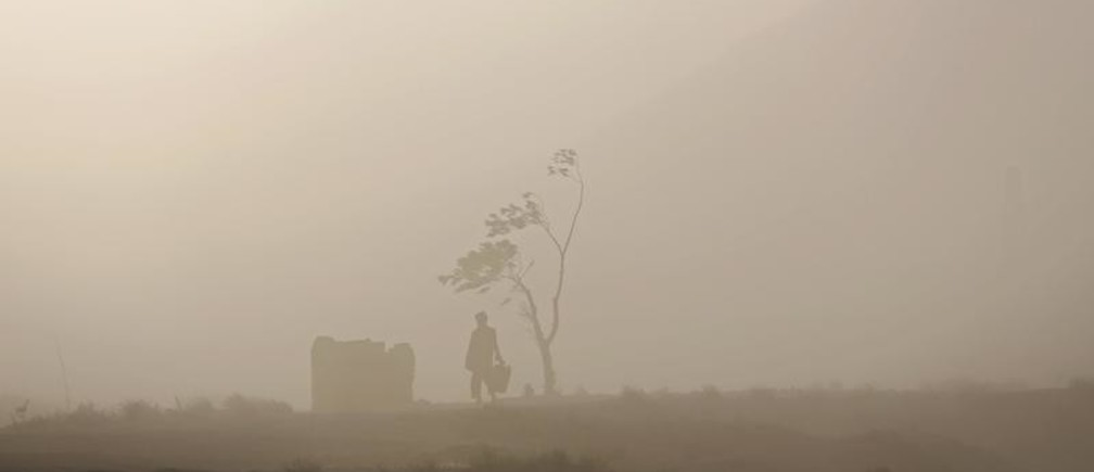 A man walks next to a tree during a dust storm in Kabul, Afghanistan August 20, 2015. REUTERS/Ahmad Masood      TPX IMAGES OF THE DAY      - GF10000177534