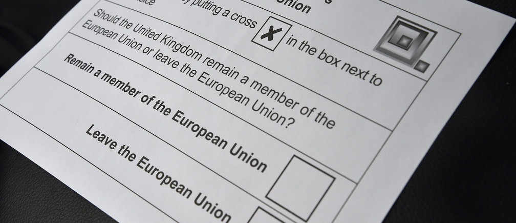 Detail of a postal vote ballot paper for the forthcoming EU referendum is seen in London, Britain, June 7, 2016.