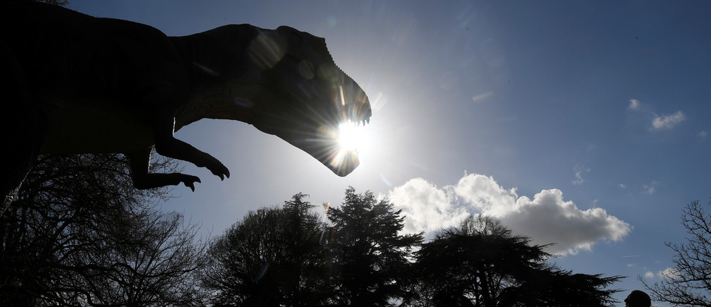A man views an animatronic life-size dinosaur ahead of an interactive exhibition, Jurassic Kingdom, at Osterley Park in west London, Britain, March 31, 2017. REUTERS/Toby Melville - RC130E7CDB60