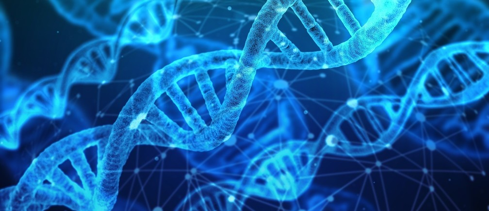 The prototyping process at the heart of biofoundries involves the design of DNA genetic components.