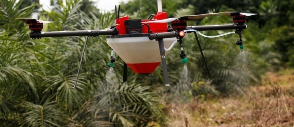 A drone takes off to sprays Emmanuel Adou's oil palm plantation in Tiassale northern Abidjan, Ivory Coast May 21, 2019. Picture taken May 21, 2019. REUTERS/Luc Gnago - RC115F6F9110