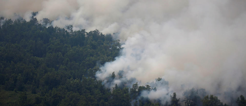 Smog covers trees during a forest fire in Palangka Raya, Central Kalimantan province, Indonesia, September 14, 2019. REUTERS/Willy Kurniawan - RC174510A660