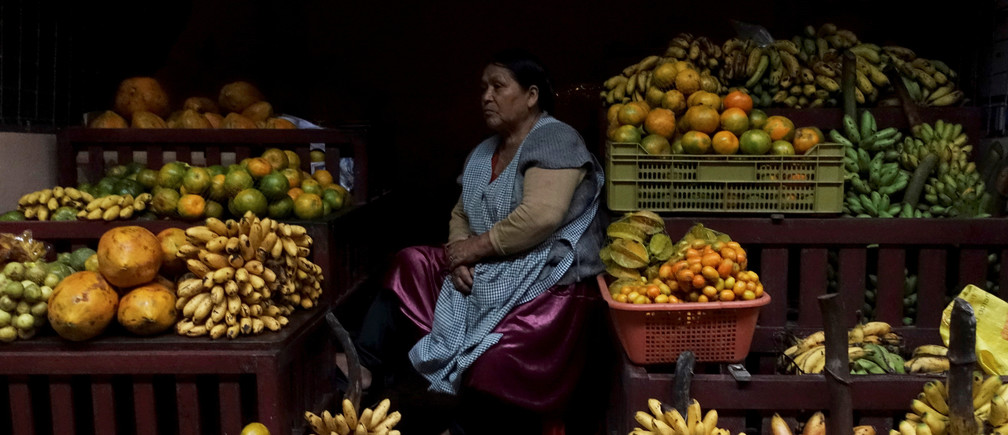 A woman sits at a fruit stall at a market in Villa Tunari in the Chapare region, Bolivia, May 17, 2019. Picture taken May 17, 2019. REUTERS/David Mercado     TPX IMAGES OF THE DAY