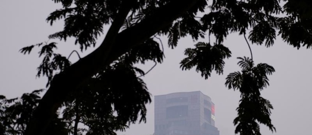 United Overseas Bank (UOB) Plaza skyscraper is seen amid trees during haze in Singapore, September 18, 2019. REUTERS/Kevin Lam - RC18AAC8A9C0