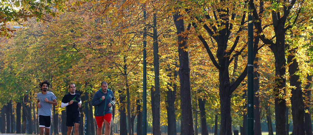 Joggers run through an alley of trees on an atumn day in Vienna, Austria, October 28, 2016. REUTERS/Heinz-Peter Bader - RTX2QU38