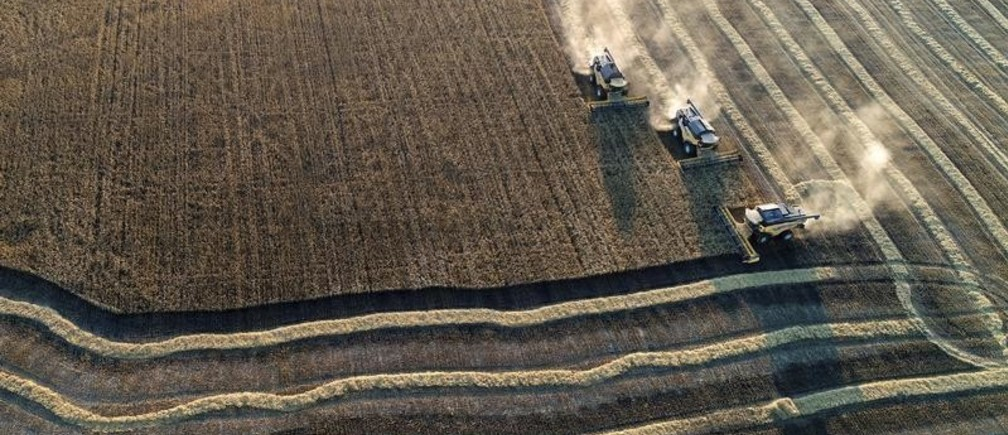 An aerial view shows combines harvesting wheat in a field of the Solgonskoye private farm outside the Siberian village of Talniki in Krasnoyarsk region, Russia September 7, 2018. Picture taken September 7, 2018. REUTERS/Ilya Naymushin - RC1E504138D0