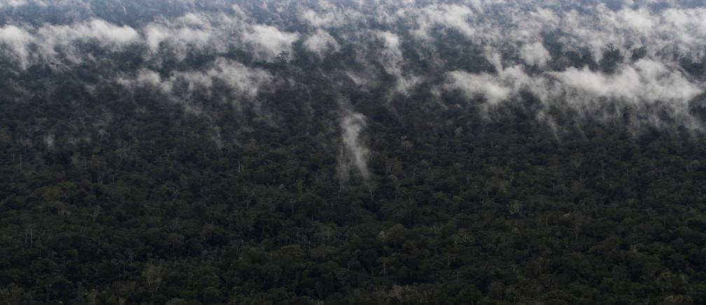 An aerial view shows the Amazon rainforest near the city of Santarem, Para State, Brazil, April 19, 2013. Picture taken April 19, 2013. REUTERS/Nacho Doce - RC1DDE3D1180