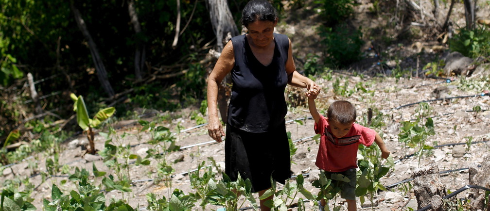 """A woman and her son walk in their drought-affected plot, in the southern village of San Francisco de Coray, in the department of Valle, Honduras, August 13, 2015. Linked to the El Nino weather phenomenon, this year's drought has hit subsistence farmers living in Central America's """"dry corridor"""" that runs through parts of Guatemala, El Salvador, Honduras and Nicaragua, hard. The U.N. World Food Program (WFP) warned the extended dry spell, which is expected to last until March 2016, will lead to a drastically reduced harvest as drought destroys bean and maize crops, local media reported. Picture taken August 13, 2015. REUTERS/Jorge Cabrera - GF10000173997"""