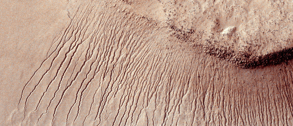 Portions of the Martian surface shot by NASA's Mars Reconnaissance Orbiter show many channels from 1 meter to 10 meters wide on a scarp in the Hellas impact basin, in this photograph taken January 14, 2011 and released by NASA March 9, 2011. Scientists have found the first evidence that briny water may flow on the surface of Mars during the planet's summer months, a paper published on Monday showed.  Researchers found telltale fingerprints of salts that form only in the presence of water in narrow channels cut into cliff walls throughout the planet's equatorial region.  REUTERS/NASA/JPL-Caltech/Univ. of Arizona/Handout   FOR EDITORIAL USE ONLY. NOT FOR SALE FOR MARKETING OR ADVERTISING CAMPAIGNS. THIS IMAGE HAS BEEN SUPPLIED BY A THIRD PARTY. IT IS DISTRIBUTED, EXACTLY AS RECEIVED BY REUTERS, AS A SERVICE TO CLIENTS - RTX1SX4N