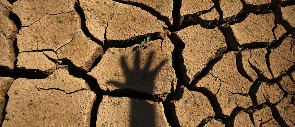 The shadow of a hand is seen on the cracked ground of Jaguary dam during a long drought period that hit the state of Sao Paulo in Braganca Paulista, 100 km from Sao Paulo January 31, 2014. This has been the hottest January on record in parts of Brazil, and the heat plus a severe drought has fanned fears of water shortages, crop damage, and higher electricity bills that could drag down the economy during an election year for President Dilma Rousseff. REUTERS/Nacho Doce (BRAZIL - Tags: ENVIRONMENT ENERGY POLITICS) - GM1EA21078A01