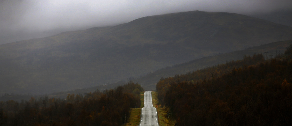 A road cuts through a forest during a rainy day on the island of Senja, north of the Arctic Circle in Norway September 29, 2014.REUTERS/Yannis Behrakis (NORWAY - Tags: ENVIRONMENT TRAVEL TPX IMAGES OF THE DAY) - GM1EA9U0EL901