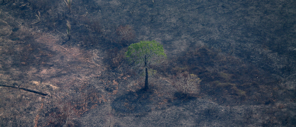 An aerial view of a burned tract of Amazon jungle as it was cleared by loggers and farmers near Porto Velho, Brazil August 29, 2019. REUTERS/Ricardo Moraes - RC1917DED780