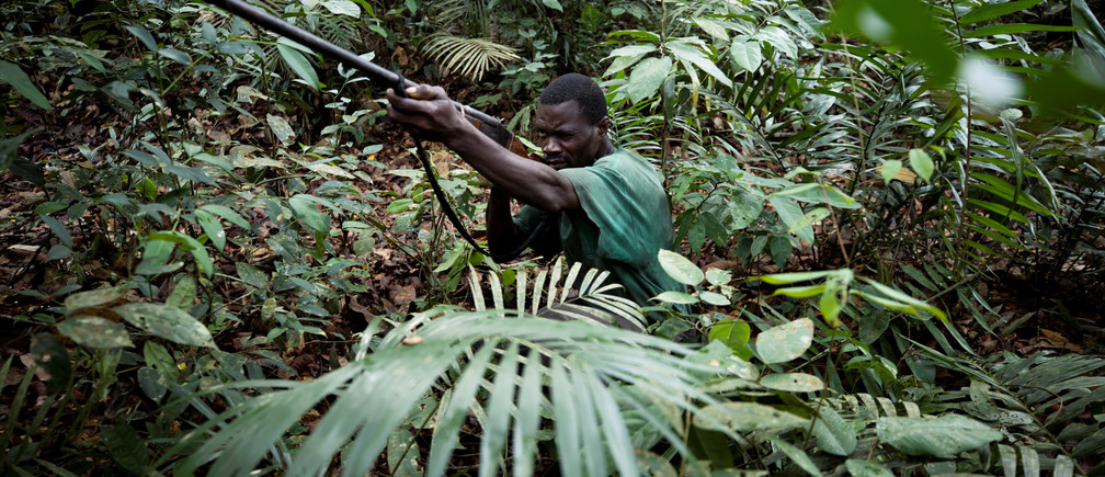 Pascal aims his gun at a monkey as he hunts in the forest near the city of Mbandaka, Democratic Republic of the Congo, April 5, 2019.