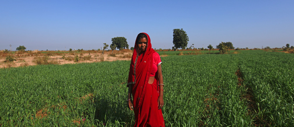 Child bride Krishna, 14, poses in a wheat field on the outskirts of her village near Baran, located in the northwestern state of Rajasthan, January 21, 2013.