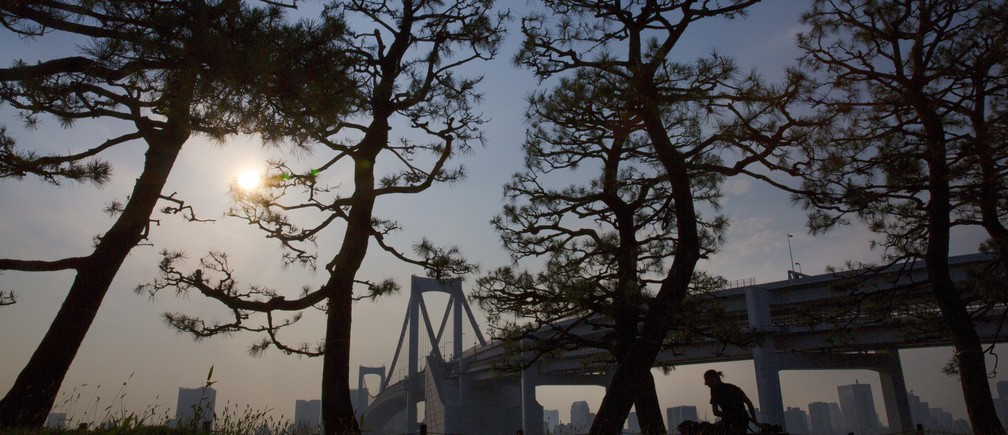 A man sits on a bench under trees at the Odaiba waterfront facing the Rainbow Bridge in Tokyo June 15, 2015.