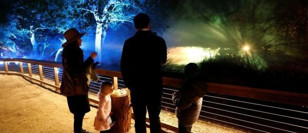 """A child interacts with """"Lightwave Lake"""" which is part of the exhibit """"Enchanted: Forest of Light"""" at Descanso Gardens in La Canada Flintridge, California U.S., December 9, 2016. Picture taken December 9, 2016.   REUTERS/Mario Anzuoni - RC17AF4B2ED0"""