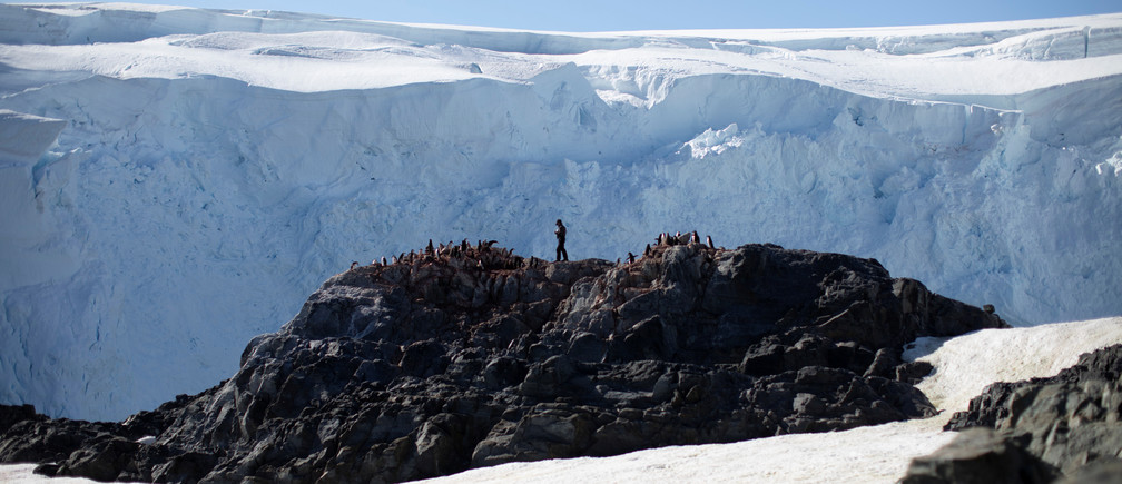 "Steve Forrest, a scientist, counts the number of chinstrap penguins in a colony standing on Anvers Island, Antarctica, February 4, 2020. REUTERS/Ueslei Marcelino     SEARCH ""ANTARCTICA PENGUINS"" FOR THIS STORY. SEARCH ""WIDER IMAGE"" FOR ALL STORIES. - RC20YE9M26UP"