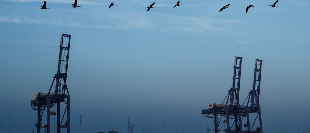 Geese fly past cranes on the docks of DP World at Southampton Docks in Southampton, Britain, March 27, 2017.  REUTERS/Eddie Keogh - RC18876C7400