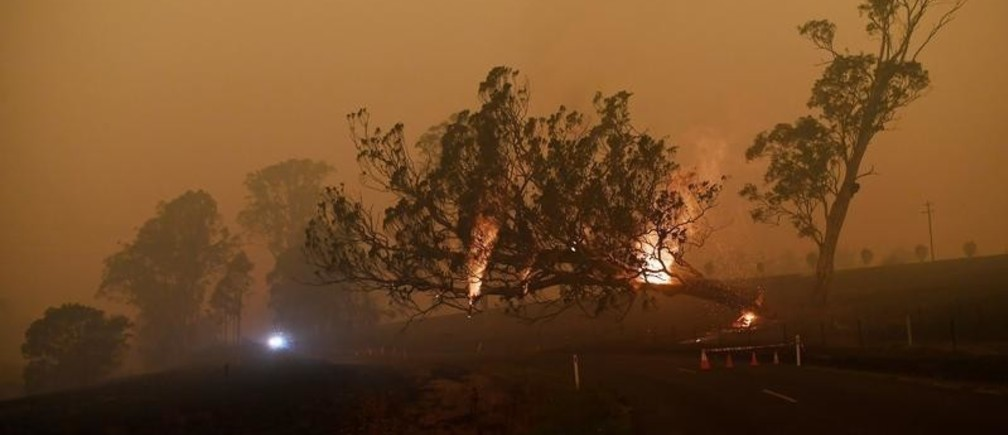 A burning gum tree is felled to stop it from falling on a car in Corbago, as bushfires continue in New South Wales, Australia January 5, 2020. REUTERS/Tracey Nearmy - RC2M9E96QPA7