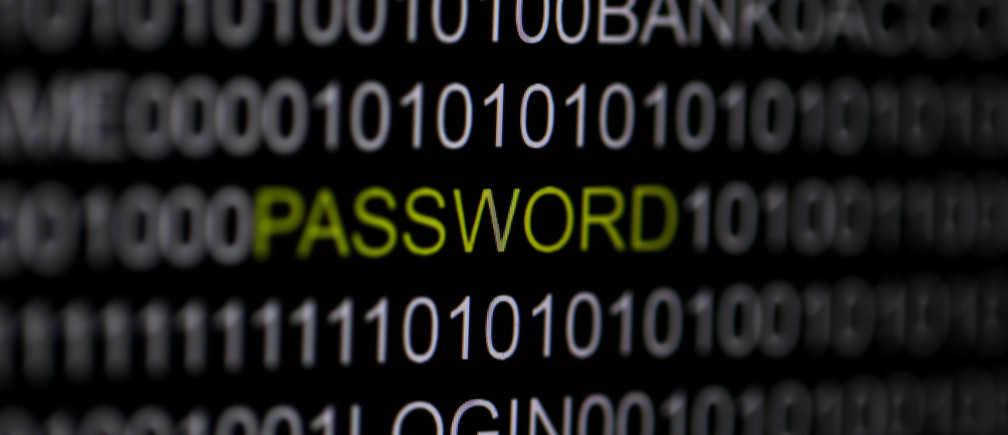 The word 'password' is pictured on a computer screen.