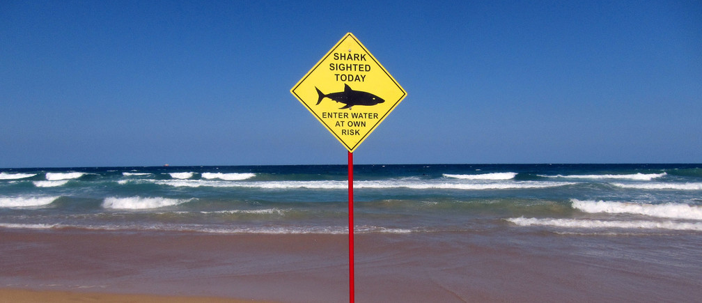 A sign erected on Manly Beach indicates a shark sighting in Sydney, Australia, November 24, 2015.