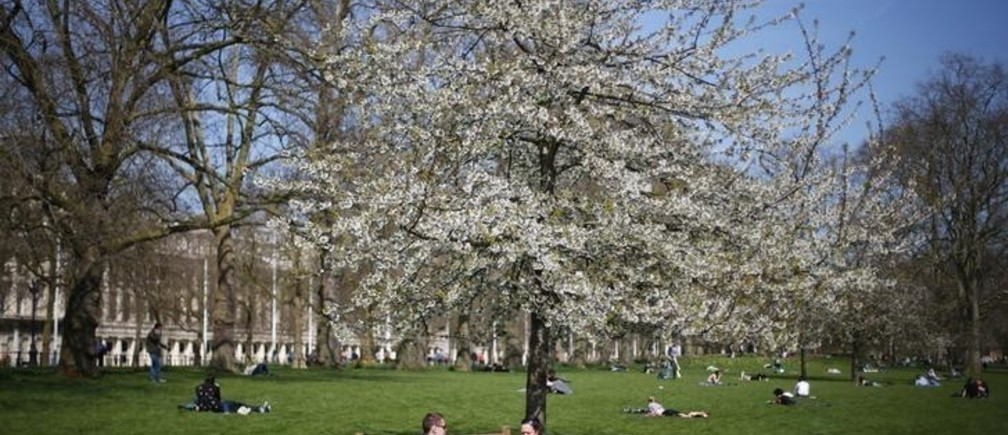 A couple sit under a tree on a warm spring day in St James's Park in central London April 23, 2013.  REUTERS/Andrew Winning (BRITAIN - Tags: CITYSCAPE ENVIRONMENT SOCIETY)