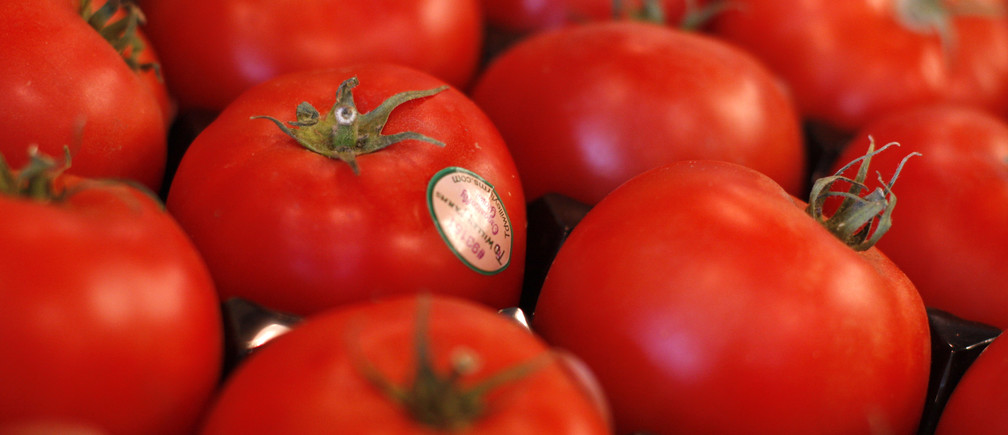 Tomatoes are displayed at the Phoenix Public Market in Phoenix, Arizona August 23, 2011. The first readout of the 2011 Second Quarter Gross Domestic Product (GDP) will be released on August 26. Picture taken August 23, 2011. REUTERS/Joshua Lott (UNITED STATES - Tags: AGRICULTURE BUSINESS) - GM1E78Q01XR01