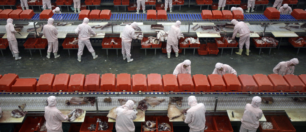 Workers cut pork at a production line in an abattoir on the outskirts of Beijing November 12, 2007. Chinese officials took members of the international media on a series of visits to food processing plants to reassure the world about their food safety following a series of incidents that sparked international concern, including athletes from competing countries in next year's Olympic Games.         REUTERS/David Gray    (CHINA) - RTX8YL