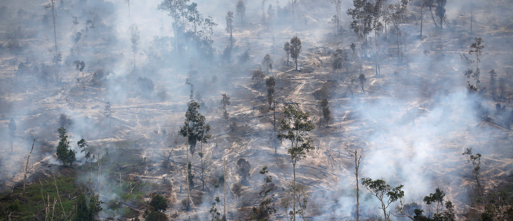 Smoke covers forest during fires in Kapuas regency near Palangka Raya in Central Kalimantan province, Indonesia, September 30, 2019. REUTERS/Willy Kurniawan - RC18B41DD590