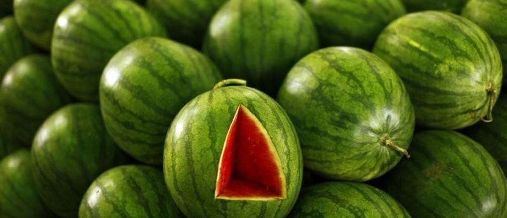 A watermelon is seen at the Kramat Jati central market in Jakarta March 4, 2011. REUTERS/Beawiharta (INDONESIA - Tags: FOOD) - GM1E7341C8301