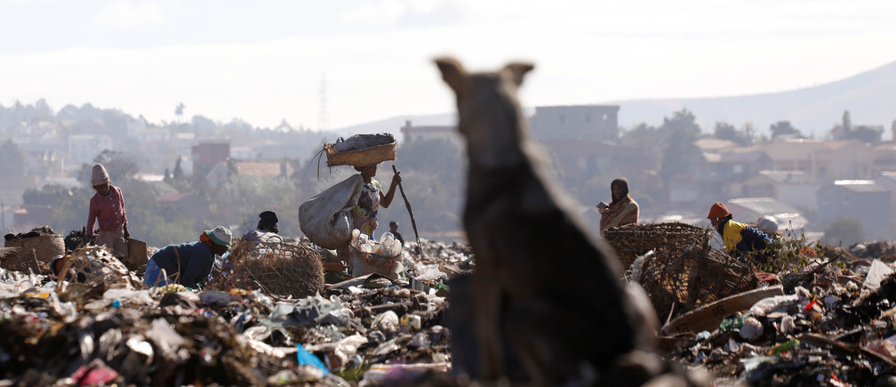 A dog watches people work in the Andralanitra garbage dump in Antananarivo, Madagascar, August 27, 2019. Picture taken August 27, 2019. REUTERS/Baz Ratner - RC1257788200