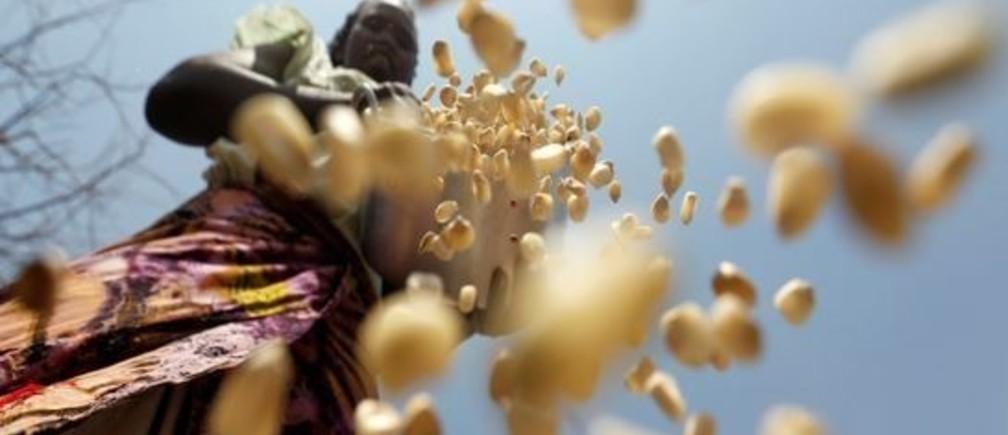 A South Sudanese refugee winnows maize grains within Kalobeyei Settlement outside the Kakuma refugee camp in Turkana county, northwest of Nairobi, Kenya, January 31, 2018.