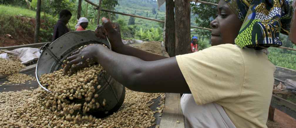 A worker dries coffee beans at a washing station cooperative on the outskirts of Kigali.