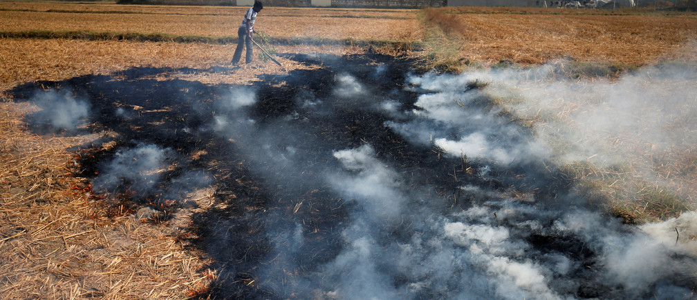 A farmer burns paddy waste stubble in a field on the outskirts of Ahmedabad, India November 30, 2018. REUTERS/Amit Dave - RC15045E2280