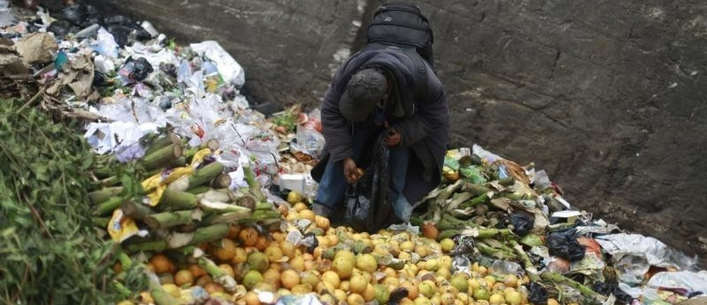 A man picks up oranges at the garbage dump of the La Terminal food centre, one of the largest food markets in Guatemala City February 27, 2015. REUTERS/Jorge Dan Lopez (GUATEMALA - Tags: SOCIETY FOOD) - GM1EB2S0S9701