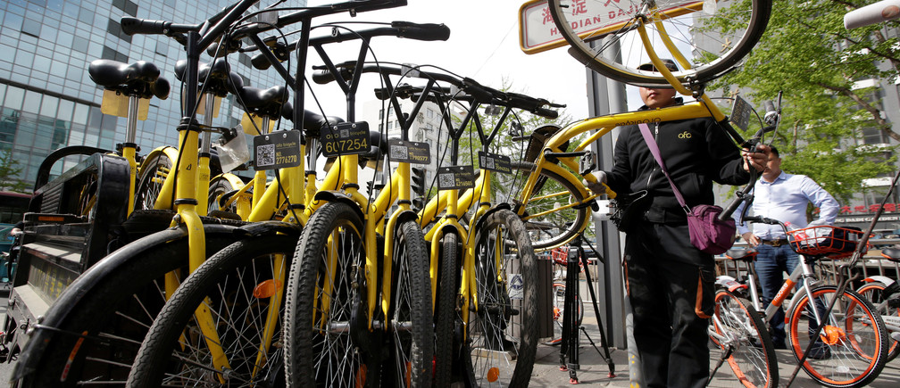 A staff member from the bike-sharing company Ofo gathers its shared bikes for use during the evening rush hour, in Beijing, China April 12, 2017. Picture taken  April 12, 2017. REUTERS/Jason Lee - RTS16B7J
