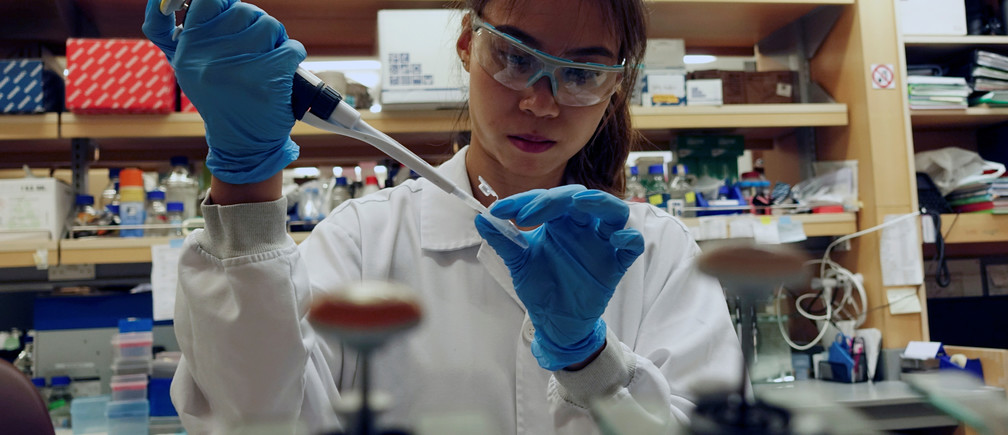 A researcher works in a lab at the Duke-NUS Medical School, which is developing a way to track genetic changes that speed testing of vaccines against the coronavirus disease (COVID-19), in Singapore March 23, 2020. Picture taken March 23, 2020. REUTERS/Joseph Campbell - RC2AQF9KBIDT