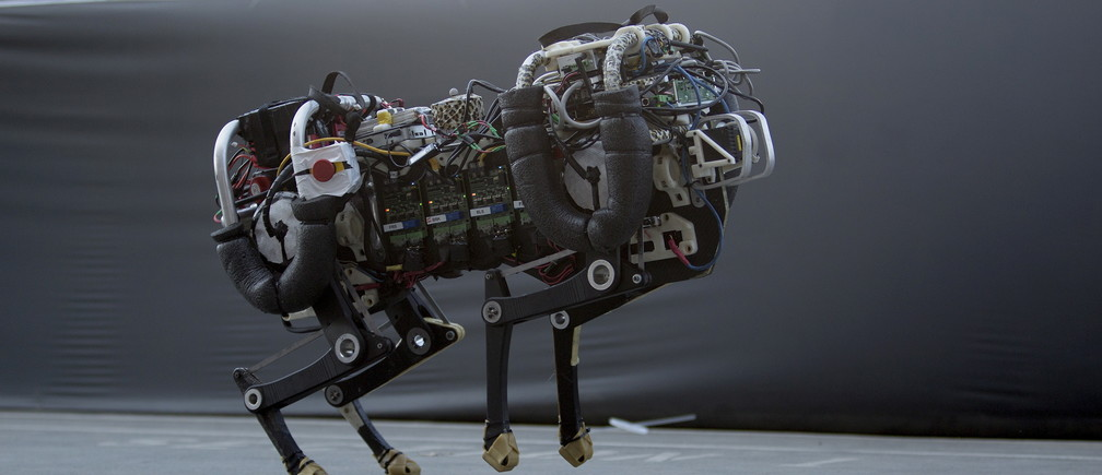 The Cheetah robot, built by MIT researchers, runs at about 10 miles per hour during a demonstration on day one of the DARPA (Defense Advanced Research Projects Agency) Robotics Challenge finals in Pomona, California, June 5, 2015. The DARPA-sponsored event drew robotic teams from around the world to compete in a series of eight challenges throughout the course.  REUTERS/David McNew - GF10000118762
