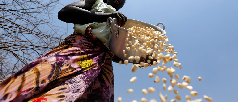 A South Sudanese refugee winnows maize grains within Kalobeyei Settlement outside the Kakuma refugee camp in Turkana county, northwest of Nairobi, Kenya, January 31, 2018. REUTERS/Thomas Mukoya