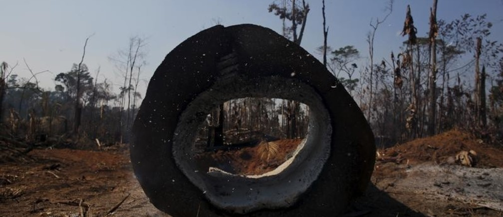 "A burning tree is pictured near Rio Pardo, in the district of Porto Velho, Rondonia State, Brazil, August 29, 2015. The town of Rio Pardo, a settlement of about 4,000 people in the Amazon rainforest, rises where only jungle stood less than a quarter of a century ago. Loggers first cleared the forest followed by ranchers and farmers, then small merchants and prospectors. Brazil's government has stated a goal of eliminating illegal deforestation, but enforcing the law in remote corners like Rio Pardo is far from easy.  REUTERS/Nacho Doce TPX IMAGES OF THE DAYPICTURE 9 OF 40 FOR WIDER IMAGE STORY ""EARTHPRINTS: RIO PARDO"" SEARCH""EARTHPRINTS PARDO"" FOR ALL IMAGES   - GF20000046412"